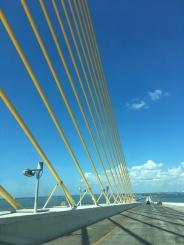 Tampa Bay Bridge